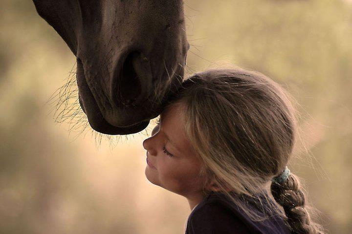Meisje knuffelt Paard.