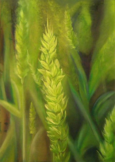 Wiebke Müller, Wheat - oil on canvas