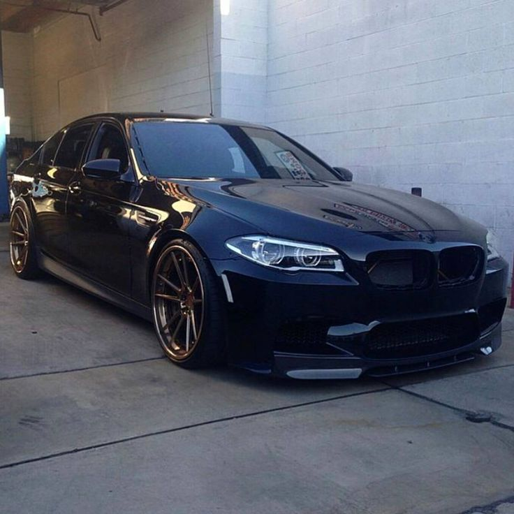 Sitting pretty  ///M 5                                                                                                                                                                                 More