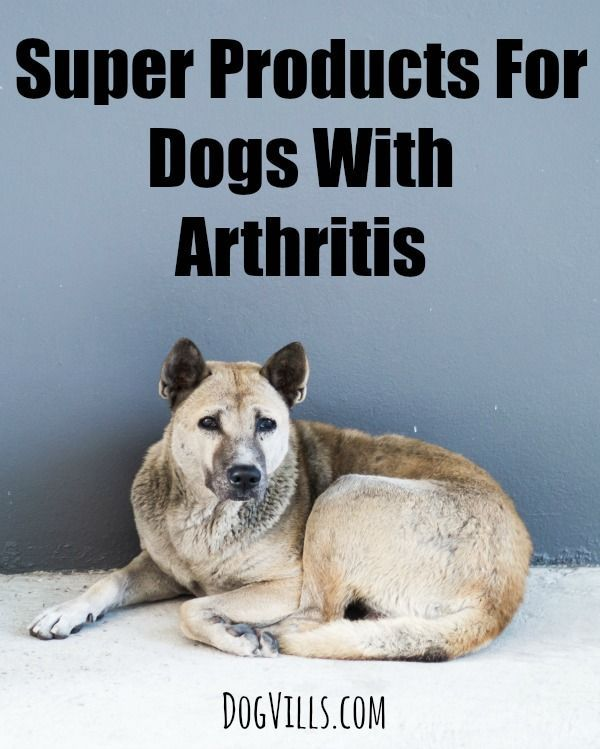 Super Products For Dogs With Arthritis Dog Vills For