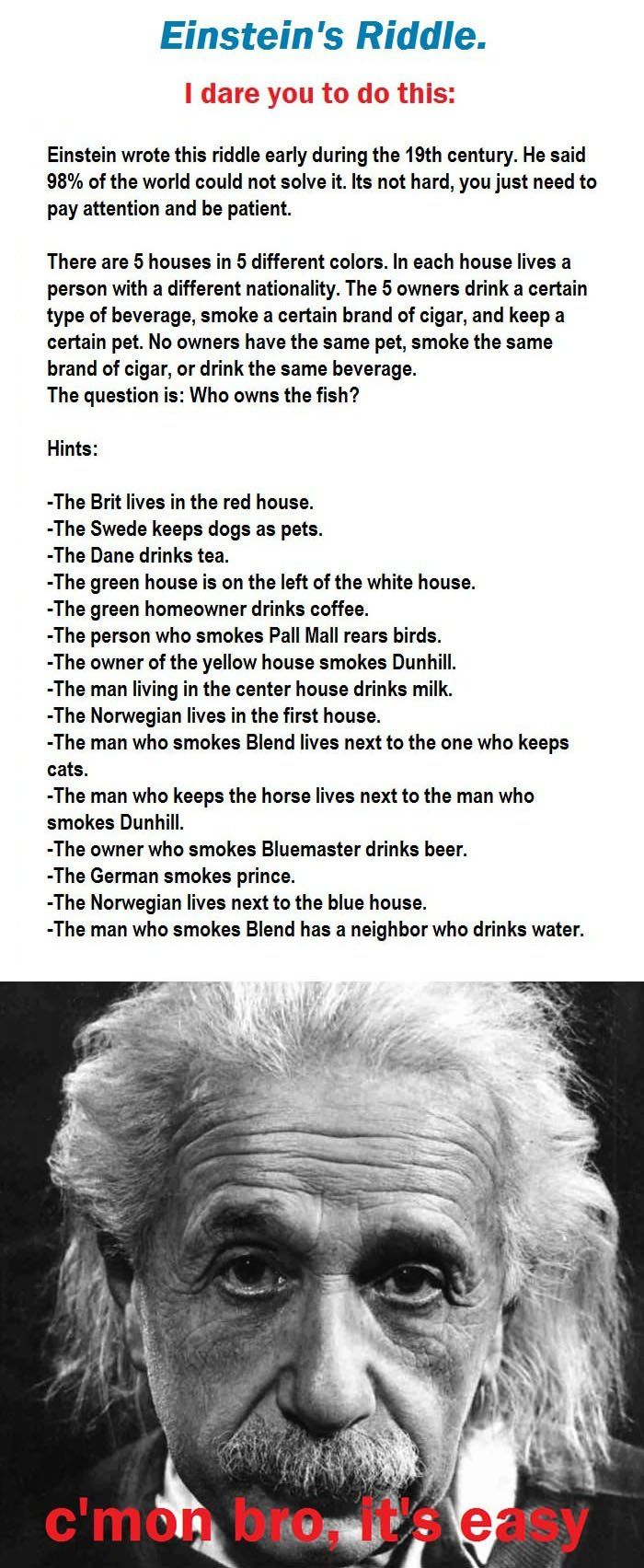 Einstein's Riddle. i completed this correctly but i need paper and pens and like 30 minutes! :p