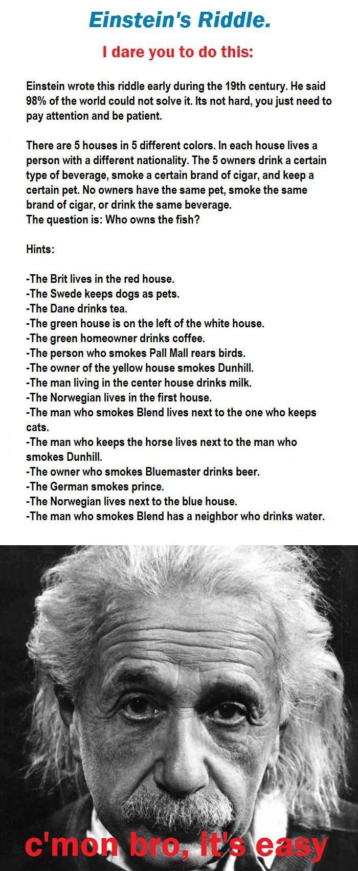 Einstein's Riddle.