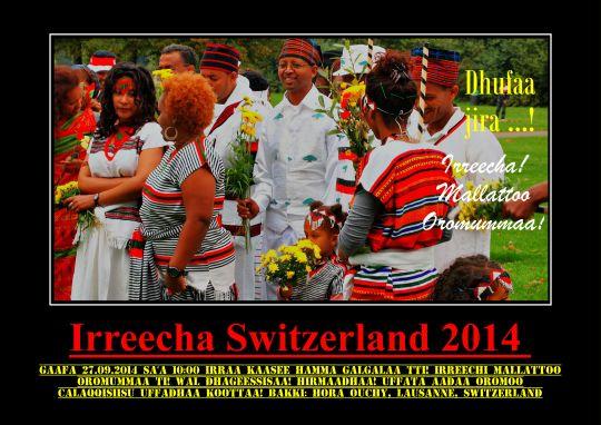 Irreecha 2014 III