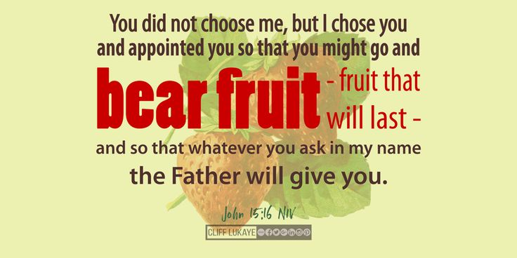 John 15:16 (NIV) You did not choose me, but I chose you and appointed you so that you might go and bear fruit - fruit that will last - and so that whatever you ask in my name the Father will give you. #ChosenToBearFruit