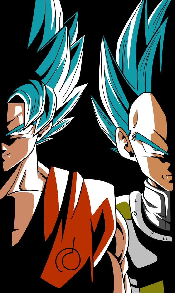 Goku and Vegeta from the Dragon Ball Super anime