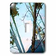 Some Aspen trees shot at an angle Light Switch Cover
