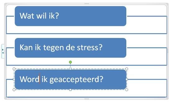 Voor loopbaankeuzes is het drie vragenmodel van Goof Wisse erg nuttig.