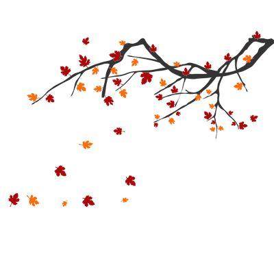 Αυτοκόλλητα τοιχου λουλούδια - δέντρα :: Κλαδί Πλατάνου - Platanos Branch