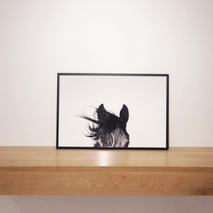 Professionally custom framed horse print available online.