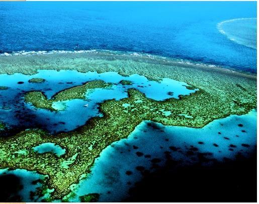 Great Barrier Reef, Townsville, Australia