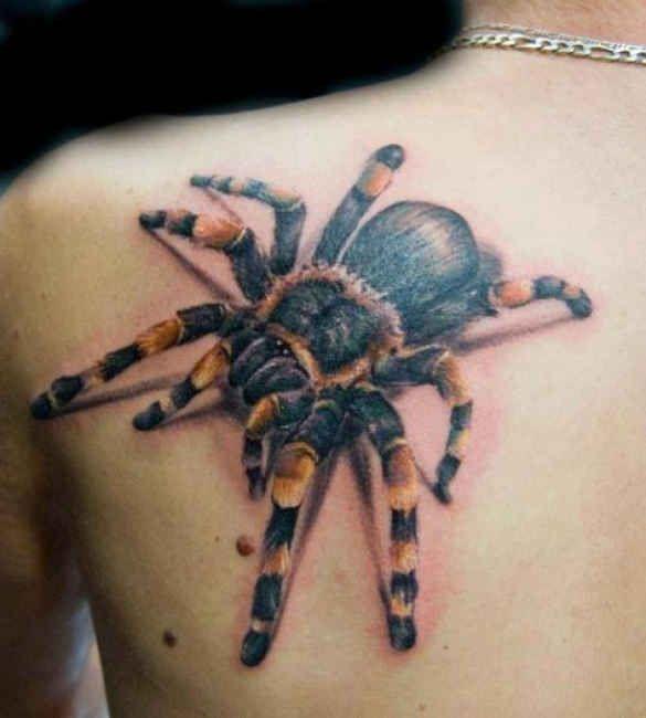 Tarantula 3D shoulder blade Tattoo  - http://tattootodesign.com/tarantula-3d-shoulder-blade-tattoo/  |  #Tattoo, #Tattooed, #Tattoos