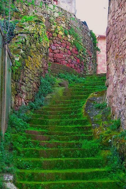 Moss Stairs, Sardinia, Italy - I love moss on stairs it looks so beautiful