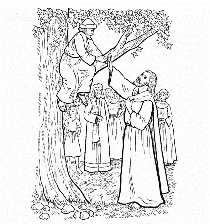 Zacchaeus Make Haste And Come Down Jesus Calling To In The Tree Coloring Page