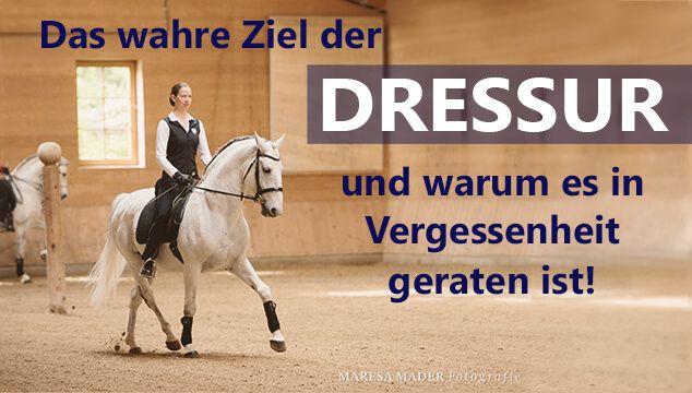 Die heutige Dressur hat sich vom wahren Ziel der Arbeit mit dem Pferd entfernt. Warum das so ist und wie Du es besser machst erfährst Du im Artikel.