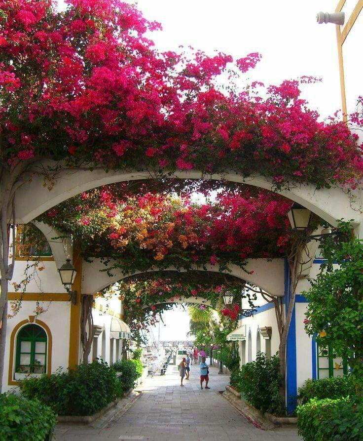Isole Canarie - Gran Canaria, Puerto Morgan