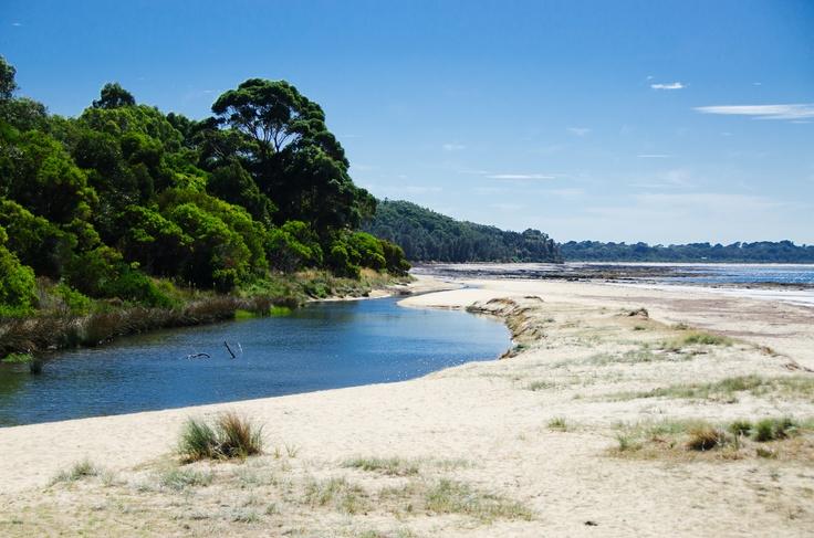 http://lovethepen.com.au, Pt Leo Beach, Mornington Peninsula,