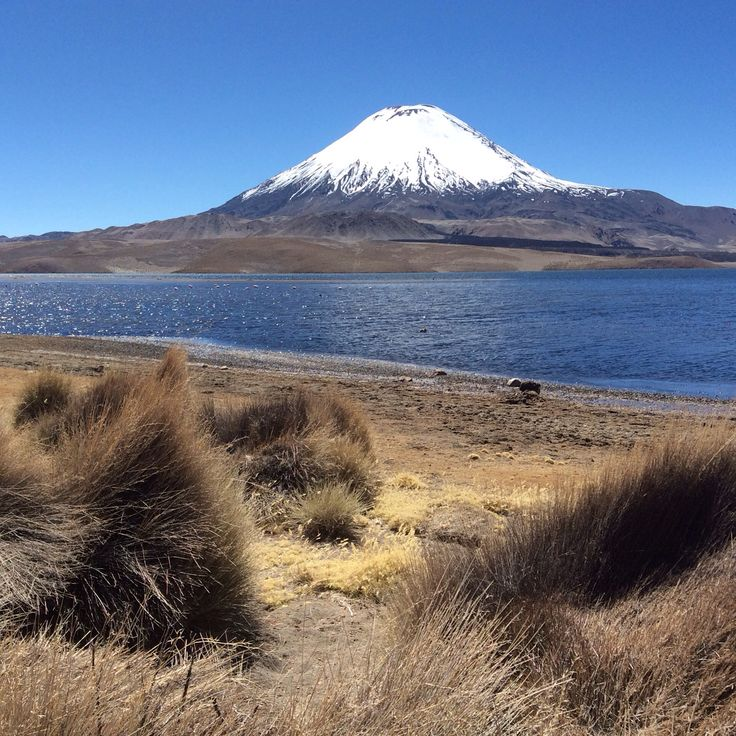 Lago Chungara e Volcan Parinacota