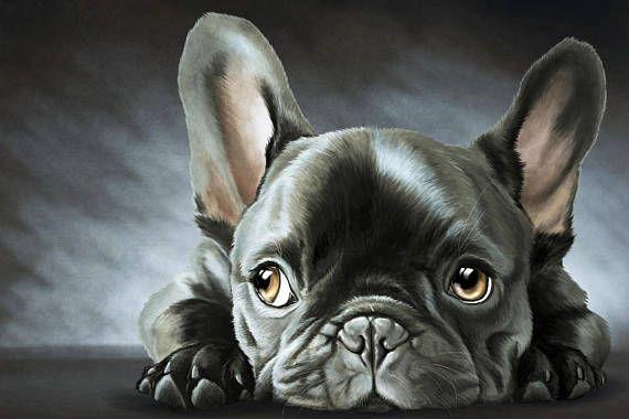 Dit is een professionele kwaliteit canvas afdruk van Frenchie schilderij. Origineel schilderij van de kunstenaar Lina Kisonyte. Afdrukken is professioneel gemonteerd op houten frame en klaar om te worden opgehangen aan de muur. Kleuren op de afdruk kunnen enigszins afwijken van wat u op uw scherm ziet. MATEN (Selecteer grootte bij het maken van een bestelling): 20 x 30 cm. - 7,9 x 11,8 30 x 40 cm. - 11,8 x 15,7 40 x 60 cm,-15,7 x 23,6 60 x 90 cm,-23,6 x 35,4 *** Als u aangepaste afdrukfo...