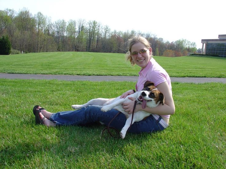 Beagle Training: Being Loyal And Best Companion