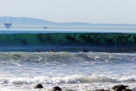 Estes tentáculos semelhantes aos de monstros marinhos são apenas parte de um alga gigante dentro da onda.