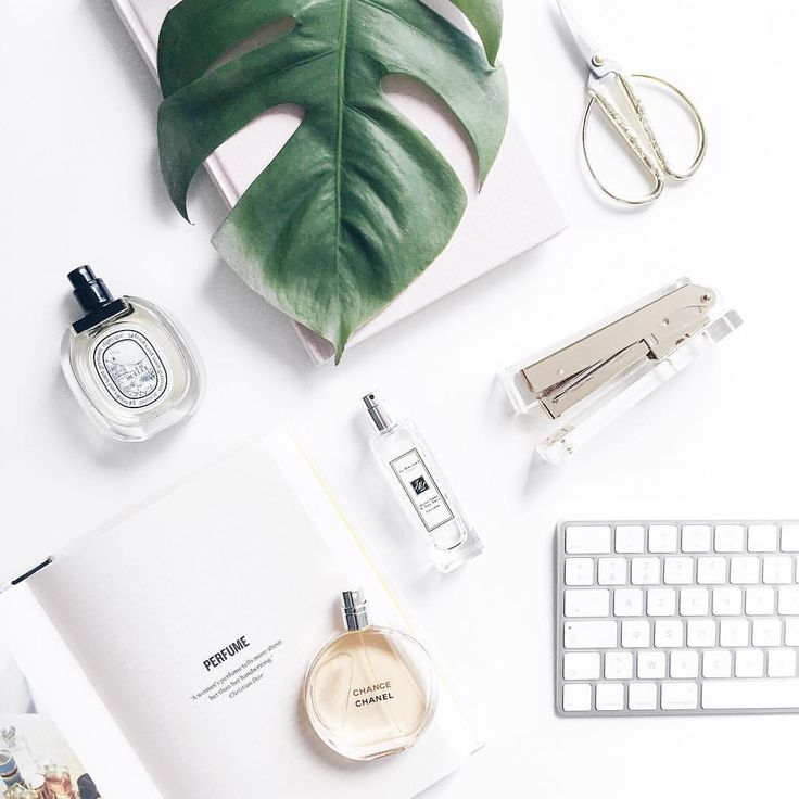 Fresh week calls for fresh scents!ICYMI, I'm talking about perfume layering on thatsaleaf.com! What's your current favourite scent? #thatsaleafFLAT