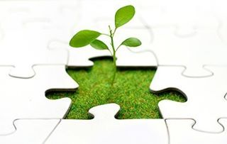 O mercado de trabalho e especialização voltados para a preservação ambiental e economia verde está em alta, exige profissionais qualificados e é uma atraente opção para inserção inicial no mercado formal. As questões ambientais estão cada vez mais em evidência e já fazem parte do nosso cotidiano, seja nos noticiários, no ensino escolar e acadêmico, em conversas em rodas de amigos, etc. A nova economia verde, as consequências das mudanças climáticas para a sociedade, a escassez de recursos…