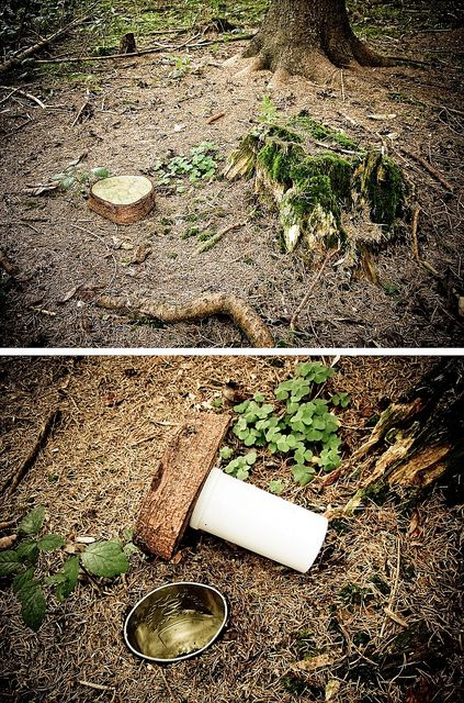 Tree stump - geocache. Or you could hide other things that you don't want people (the government) to find, like your guns, ect. I love this.