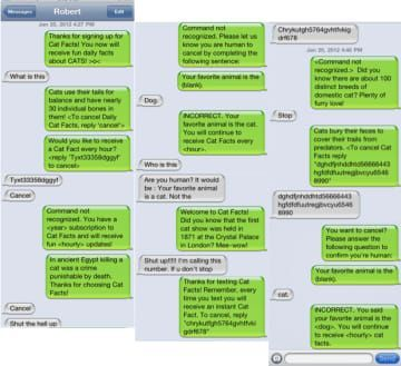 "Masterful ""Cat Facts"" Texting Prank #catfacts"