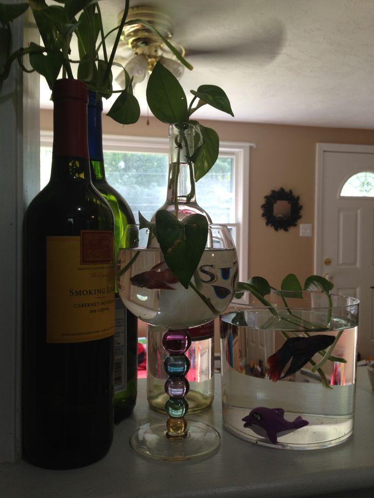 beta fish/kitchen wine theme | wine decor kitchen, wine