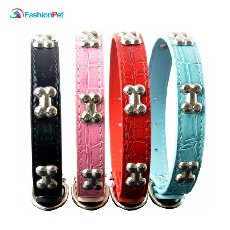 Gator Style Pu Leather Pet Product  Studded Bone Charms Pet Dog Puppy Cat Necklace Collar // FREE Shipping //     Buy one here---> https://thepetscastle.com/gator-style-pu-leather-pet-product-studded-bone-charms-pet-dog-puppy-cat-necklace-collar/    #catoftheday #kittens #ilovemycat #lovedogs #pup