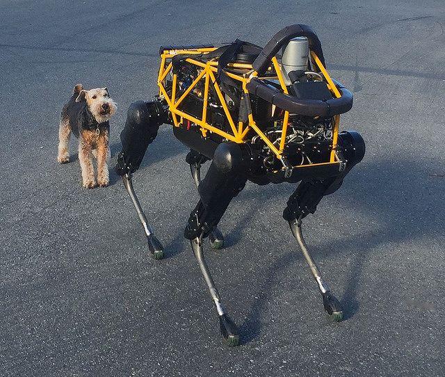 Boston Dynamics' dog Spot meets Andy Rubin's dog Alex