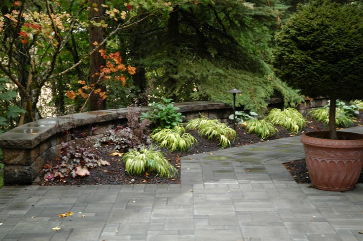 Curved Retaining Wall With Spaced Plants Landscape East