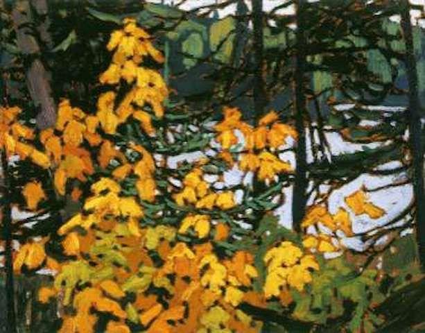 harris-lawren-canvas-autumn-algoma.jpeg (613×480)