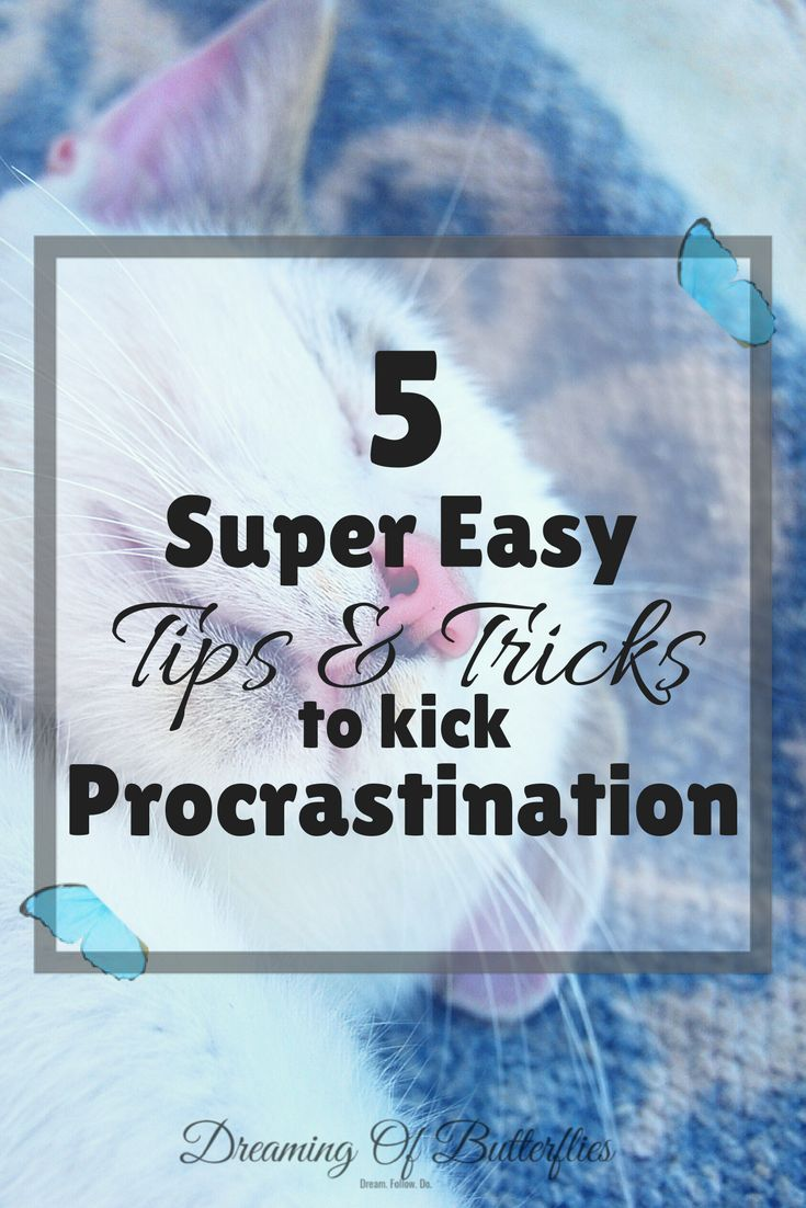Let's face it, We all procrastinate, even when we shouldn't. Here are 5 super easy tips to kick procrastination in the butt and be more productive!