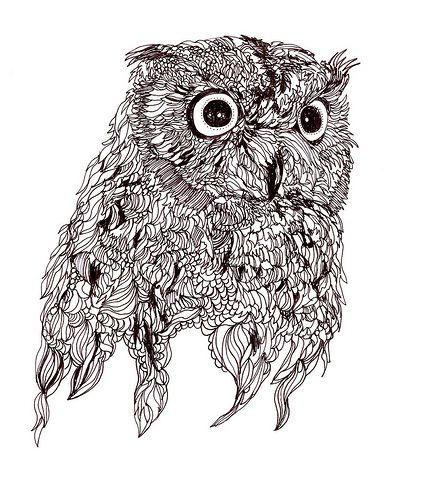 Owl drawings vintage for http kids for Draw the owl