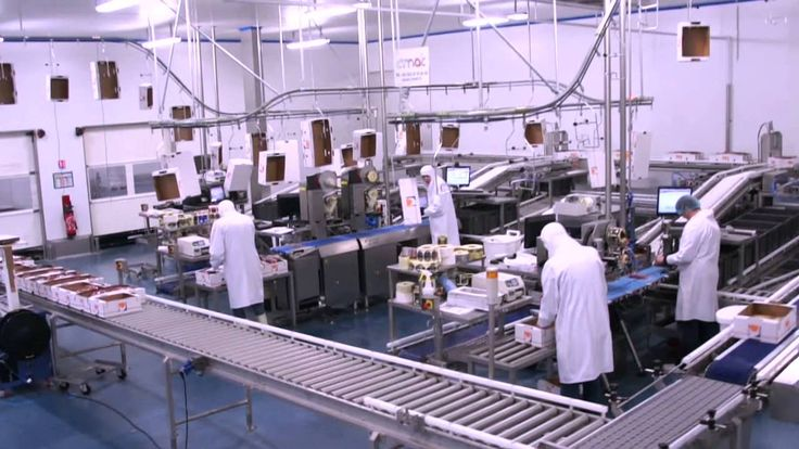 Delmond Foie gras - Le Transtockeur par Spie et VIF #agroalimentaire #foodindustry #software #informatique