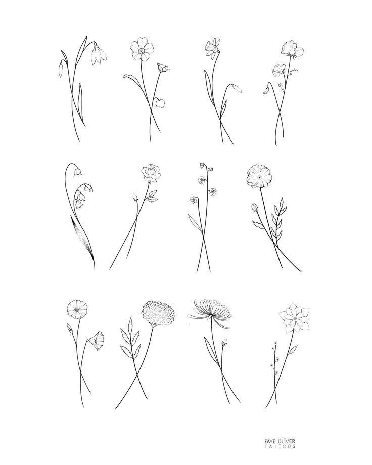 Birth Flower Flash January Snowdrop February Violet March Daffodil A Wildblumen Tattoo Kleine Tattoo Ideen Geburt Blumen
