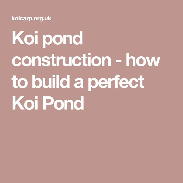 Koi pond construction - how to build a perfect Koi Pond
