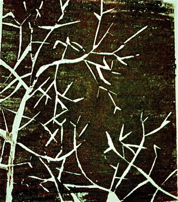 "Print by Mireia Rosich. ""Tree branch"", wood cut, 2009"