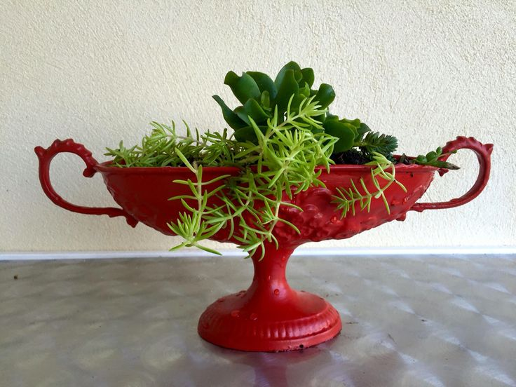 Old trophy revamped into colourful planter