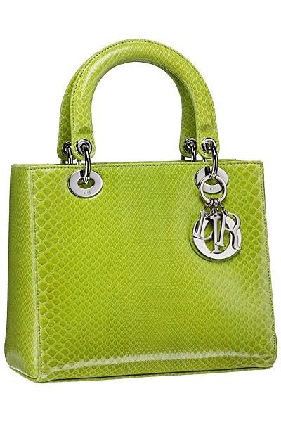 Bag in Dior Pre-spring 2013 Resort Collection