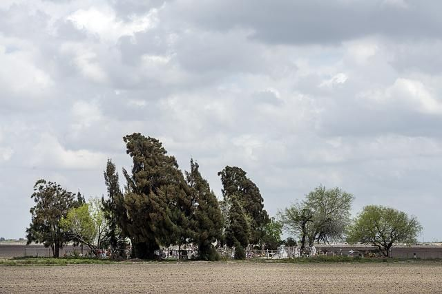 The Landrum (sometimes called Los Flores) Cemetery, a country graveyard established in the 1920s near the community of San Benito in Cameron County, along the Rio Grande River in far-south Texas