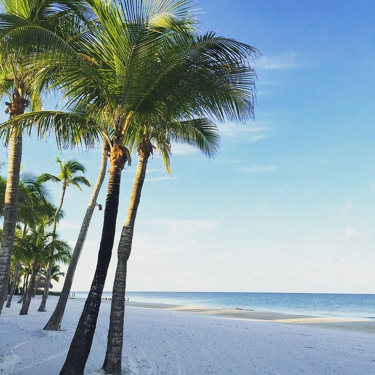 Port Royal is Paradise. Naples, Florida