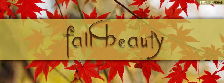 fall cover photos for facebook   Autumn Nature Fall Facebook Cover Timeline Profile Covers - kootation ...