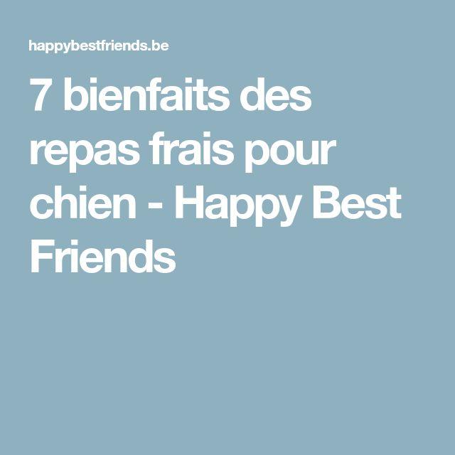 7 bienfaits des repas frais pour chien - Happy Best Friends