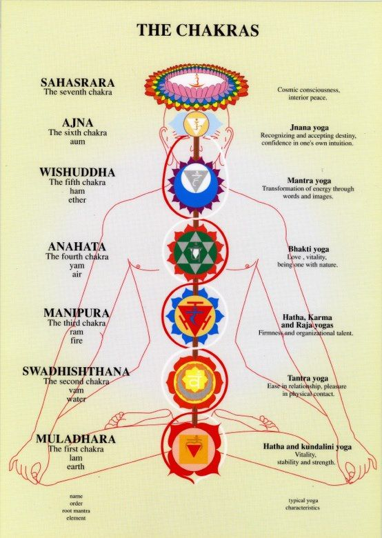 I've been told I am connected most with the heart chakra---i guess bhakti yoga is something I should look into:)