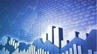 How to Conduct Fundamental analysis to pick profitable stock Coupon|Free  #coupon