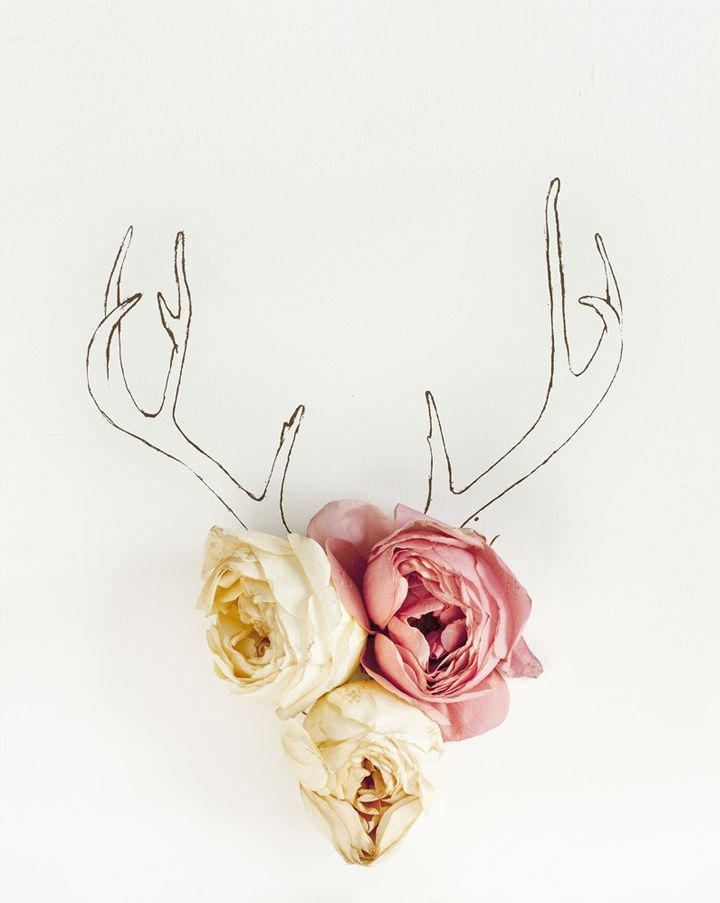 antler & roses: Line Drawings, Wall Art, Wall Decor, Idea, Walldecor, Antlers, Flowers Photos, Deer Head, Flowers Art
