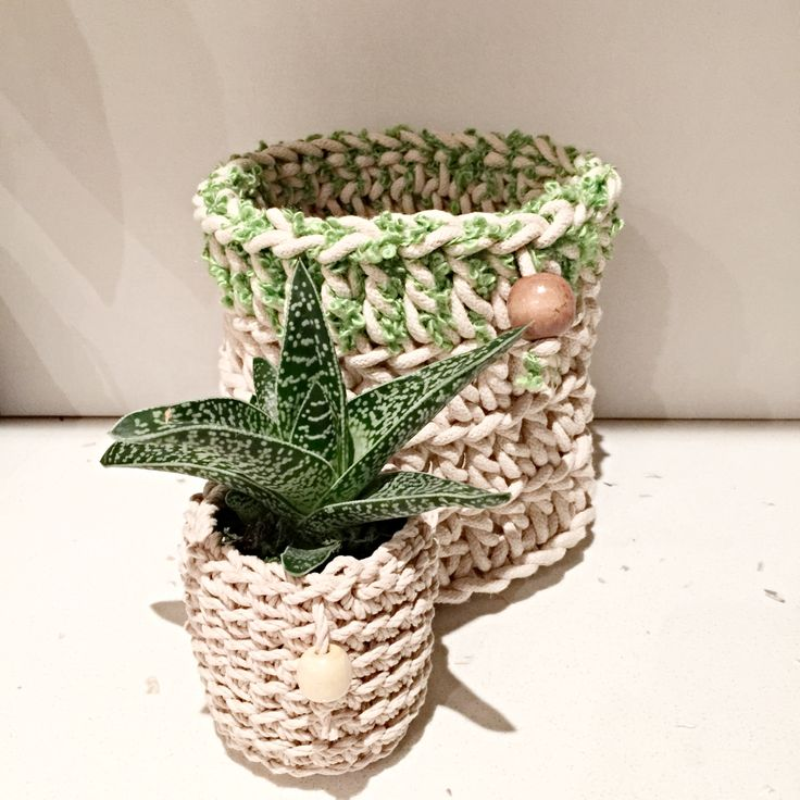 Cotton rope and twine baskets, storing plants or kitchen utensils!
