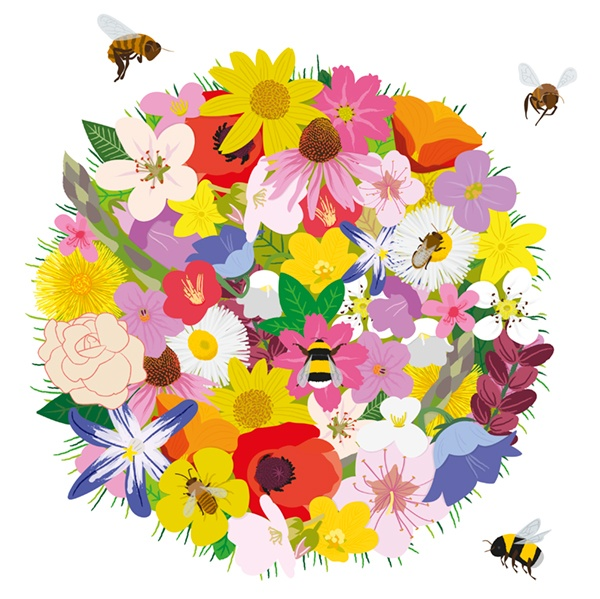 a study of the importance of bees Honey bees get most of the buzz, but some native bees are better at  hold the  solution to world pollination problems that affect important crops.